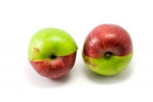 gezonde voeding appel cholesterol